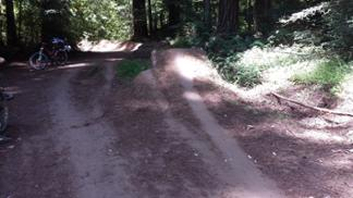 Wilder Ranch 2-3 laps * 5 miles, 800ft descent, 200ft climb