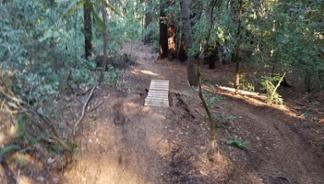 UCSC : Magic Carpet / U-Con - Emma McCrary 2-3 laps * 7 miles, 1100ft descent, 100ft climb